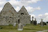 stock photo of irish moss  - The ruins of St - JPG