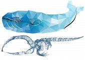 stock photo of skeleton  - whale skeleton - JPG