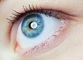 stock photo of human eye  - image of human eye - JPG