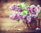 Постер, плакат: Lilac flowers bunch in a basket over blurred wood background Beautiful violet Lilac flower still li