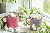 Постер, плакат: Hot Cocoa With Marshmallows In Pink Cups