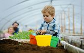 Kid In Greenhouse. Happy Kid Work In Greenhouse. Greenhouse Kid Business. Kid In Greenhouse With Sma poster
