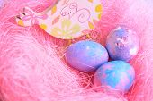 Space Galactic Easter Eggs In A Pink Nest Next To A Chicken poster