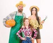 Parents And Daughter Celebrate Harvest Holiday Pumpkin. Harvest Festival Concept. Family Farmers Gar poster