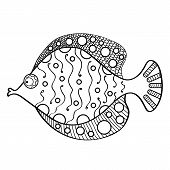 Doodle Decorative Hand Drawn Fish Illustration. Fancy Unique Fish With Beautiful Patterns. Zentangle poster
