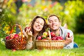 stock photo of eat grass  - Happy Couple Eating Organic Apples in Autumn Garden - JPG