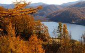 image of sakhalin  - Autumn landscape on island Sakhalin - JPG