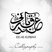 Eid-Ae-Kurbani or Eid-Ae-Qurbani, Arabic Islamic calligraphy for Muslim community festival. EPS 10.