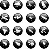 stock photo of creepy crawlies  - a set of sixteen internet buttons of rodents and insects - JPG