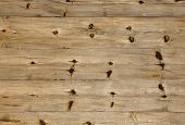 foto of node  - Wooden wall assembled of boards with nodes - JPG