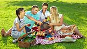 pic of eat grass  - Group of four young friends enjoying a healthy picnic sitting outdoors on a red and white checked rug on green grass drinking red wine and eating a variety of fresh fruit and bread - JPG