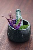 image of purple sage  - mortar and pestle with fresh sage flowers  - JPG