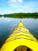 stock photo of kayak  - Kayaking in the everglades with a shot of the front of the kayak - JPG