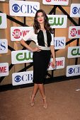 Meghan Ory at the CBS, Showtime, CW 2013 TCA Summer Stars Party, Beverly Hilton Hotel, Beverly Hills