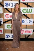 Dawn Olivieri at the CBS, Showtime, CW 2013 TCA Summer Stars Party, Beverly Hilton Hotel, Beverly Hi
