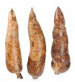 image of cassava  - three whole manioc  - JPG