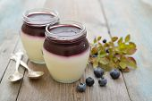stock photo of panna  - Dessert panna cotta with fresh blueberry on wooden background