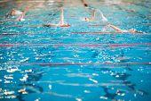 foto of swimming  - People swimming in indoor  swimming pool  - JPG