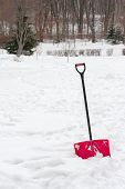 stock photo of snow shovel  - Red plastic shovel with black handle stuck in fluffy white snow - JPG
