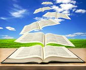 pic of bible story  - Open book bible and pages flying into skies  - JPG