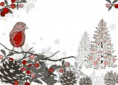 image of taper  - Christmas hand drawn background for xmas design with winter bird and Christmas tree - JPG