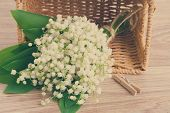 picture of lilly  - lilly of the valley flowers posy in basket on wooden background retro toned - JPG