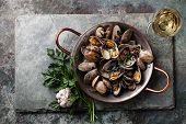 stock photo of clam  - Shells vongole venus clams with parsley in copper cooking dish on stone slate background - JPG