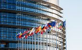stock photo of european  - All EU Flags in front of the European Parliament Flags in front of the European Parliament Strasbourg Alsace France - JPG
