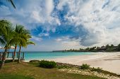 stock photo of mauritius  - Tropical Paradise in Dominican Republic or Seychelles or Caribbean - JPG