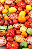 stock photo of plum tomato  - colorful tomatoes - JPG