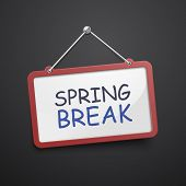 picture of spring break  - spring break hanging sign isolated on black wall - JPG