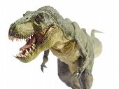 foto of pacific rim  - Isolated dinosaur and monster model in white background - JPG