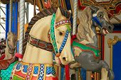 picture of carnival ride  - Carousel horse ride at a amusemnent park - JPG