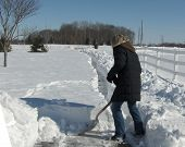 picture of snow shovel  - woman shoveling snow in driveway woman - JPG