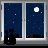Nightly window and cats. Vector.