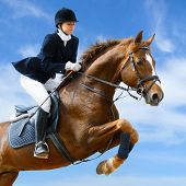 picture of sorrel  - Young girl jumping with sorrel horse - JPG