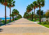 Coastline And Promenade In Limassol, Island Cyprus, Europe, Mediterranean Sea. Bright Sunny Day And poster
