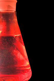 stock photo of pyrex  - A tempered glass beaker used in a research laboratory - JPG