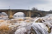 pic of tyne  - Frost crystals on driftwood on the banks of the Tyne at Corbridge - JPG