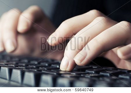 Female hands typing on computer keyboard poster