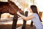 stock photo of horse face  - Gorgeous young woman face to face with a horse and smiling - JPG