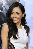 LOS ANGELES - FEB 10:  Aimee Garcia at the
