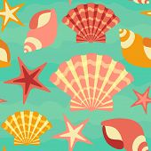 picture of scallop-shell  - Starfish - JPG