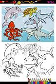 stock photo of dauphin  - Coloring Book or Page Cartoon Illustration of Black and White Funny Sea Life Animals and Fish Characters for Children - JPG