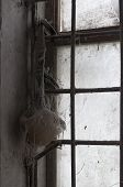 stock photo of respiration  - Old used Respirator on window in dust - JPG