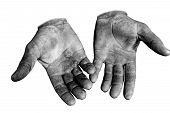 picture of callus  - Worker is showing his chapped hands dirty and injured palms against white background - JPG