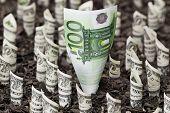 stock photo of one hundred dollar bill  - Euro stronger than dollar concept One hundred euro bill among dollar bills - JPG