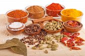 pic of garam masala  - gorgeous setting with cooking spices and herbs  - JPG
