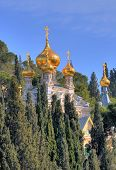pic of church mary magdalene  - The Russian Orthodox church of Mary Magdalene at the mount Olives in Jerusalem Israel - JPG