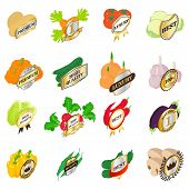 Best Vegetables Icons Set. Isometric Set Of 16 Best Vegetables Vector Icons For Web Isolated On Whit poster
